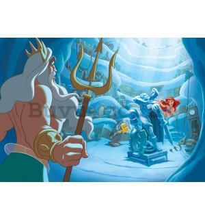 Wall Mural: The Little Mermaid (1) - 254x368 cm