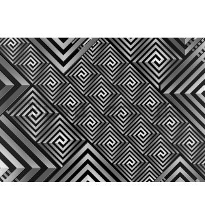 Wall Mural: Black and white abstract (1) - 254x368 cm