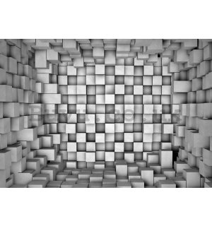 Wall Mural: Cubic space - 254x368 cm