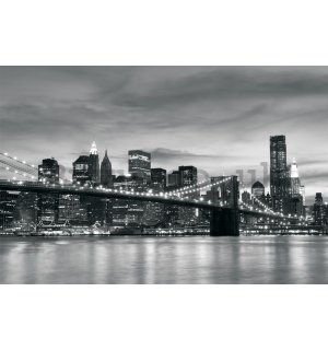 Wall Mural: Brooklyn Bridge - 254x368 cm