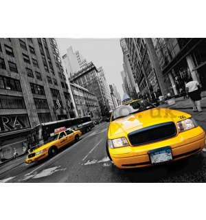 Wall Mural: Manhattan Taxi - 254x368 cm