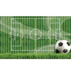 Wall Mural: Football pitch (1)  - 254x368 cm