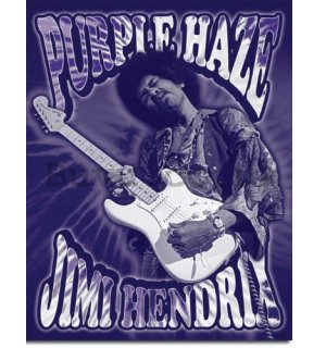 Metal sign - Jimi Hendrix (Purple Haze)