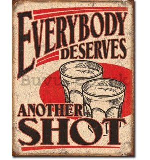 Metal sign - Everybody Deserves Another Shot