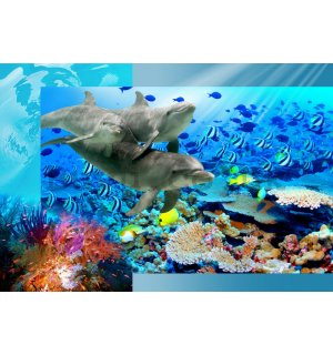 Wall Mural: Undersea world - 254x368 cm