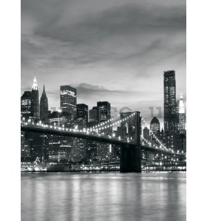 Wall Mural: Brooklyn Bridge - 254x184 cm