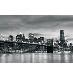 Wall mural vlies: Brooklyn Bridge - 152,5x104 cm