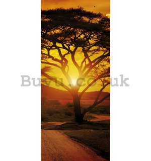 Photo Wallpaper Self-adhesive: African sunset - 211x91 cm