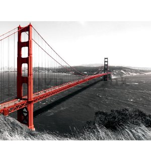Painting on canvas: Golden Gate Bridge (1) - 75x100 cm