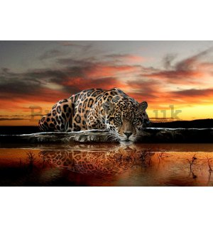 Painting on canvas: Jaguar - 75x100 cm