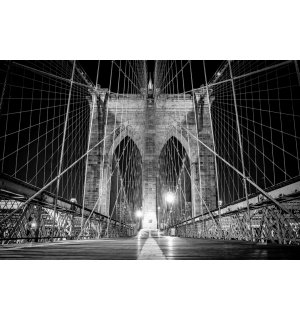 Wall Mural: Brooklyn Bridge (Black & White Detail) - 254x368 cm