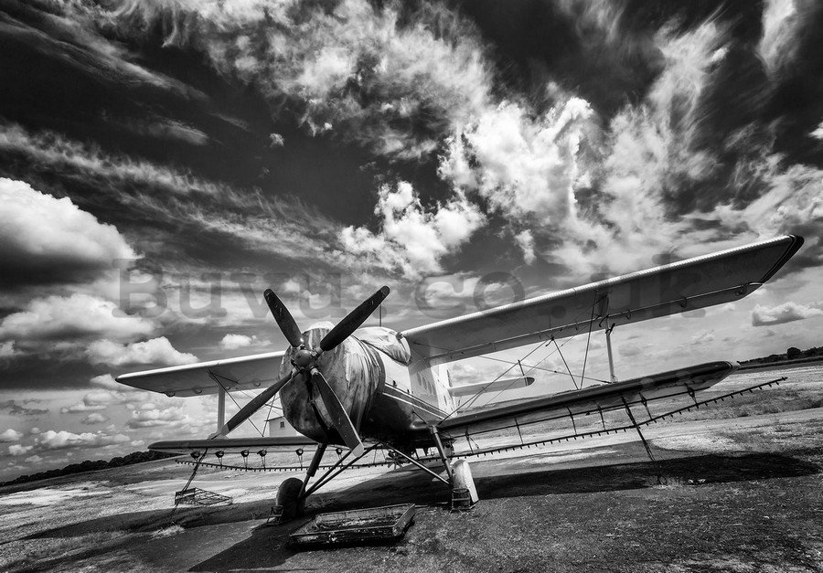 Painting on canvas: Biplane (black and white) - 75x100 cm