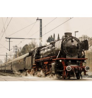 Painting on canvas: Steam locomotive (1) - 75x100 cm