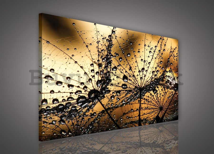 Painting on canvas: Dandelion and drops (orange) - 75x100 cm