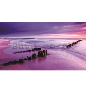 Painting on canvas: Purple sunset on the beach - 75x100 cm