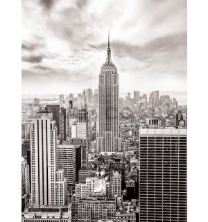 Wall Mural: View on New York (black and white) - 254x184 cm