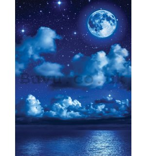 Wall Mural: Moon Night - 254x184 cm