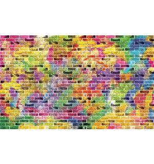 Wall Mural: Colourful wall (1) - 254x368 cm