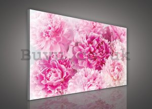 Painting on canvas: Pink Roses (2) - 75x100 cm