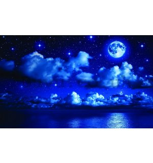 Wall Mural: Moon Night - 254x368 cm