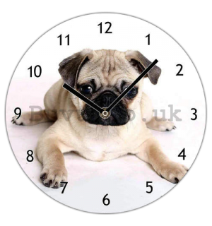 Glass wall clock: Pug - 30 cm