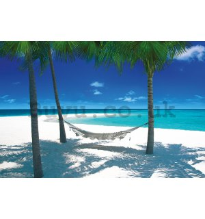 Poster - Hammock in Paradise