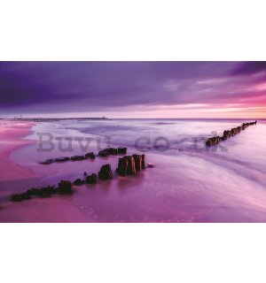 Wall Mural: Violet beach sunset - 254x368 cm