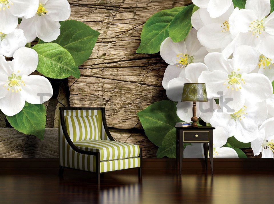 Wall Mural: White orchids (2) - 184x254 cm