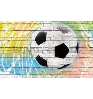 Wall Mural: Football ball (painted) - 184x254 cm