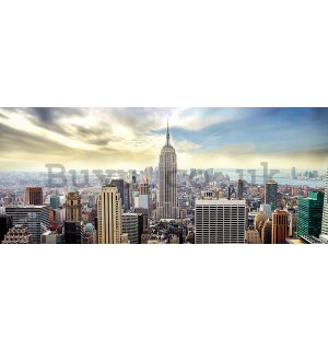 Wall Mural: View on New York - 104x250 cm