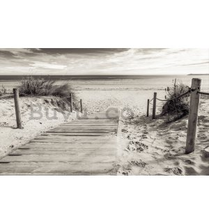 Wall Mural: Beach (black and white) - 184x254 cm