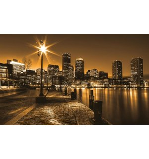Wall Mural: Waterfront (sepia) - 254x368 cm