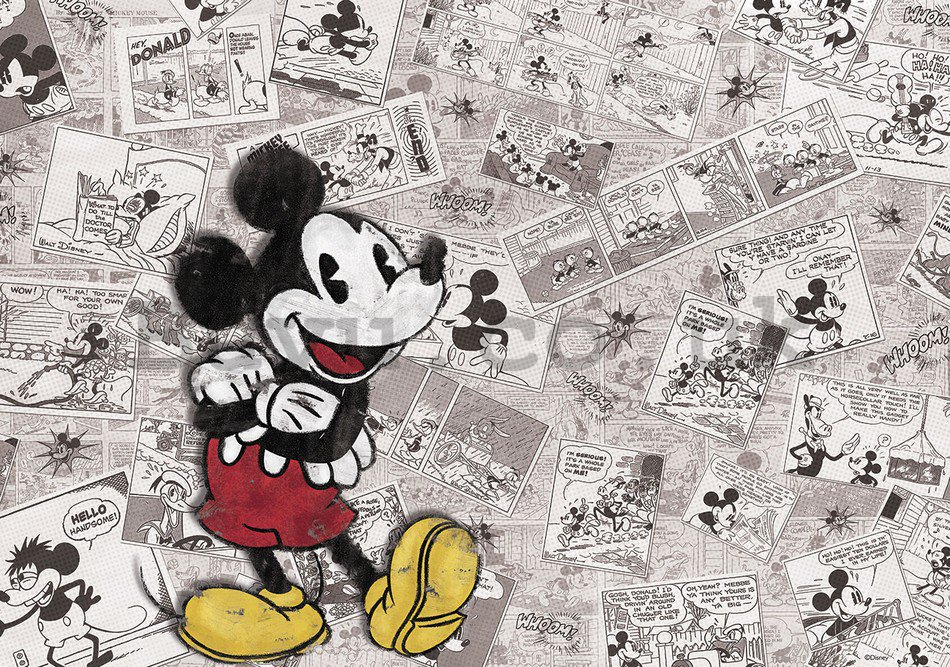 Wall Mural: Mickey Mouse (newspapper) - 254x368 cm