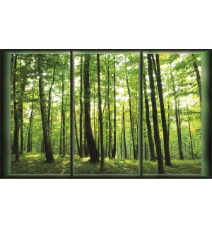 Wall Mural: Forest (View from the window) - 184x254 cm