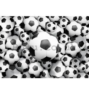 Wall Mural: Football balls (2) - 184x254 cm
