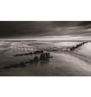 Wall Mural: Black and white coast - 254x368 cm