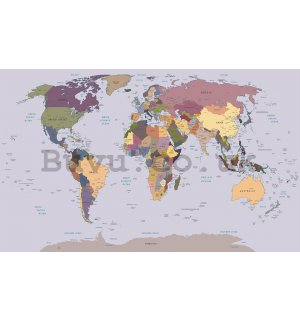 Wall Mural: Map of the world (1) - 254x368 cm