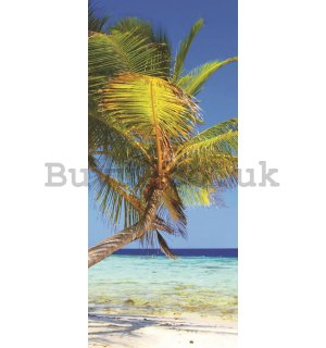 Photo Wallpaper Self-adhesive: Beach with palm - 211x91 cm