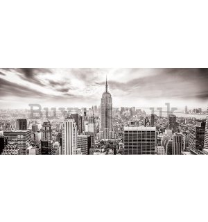 Wall Mural: View on New York (black and white) - 104x250 cm