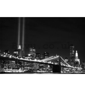 Wall Mural: Black & White Brooklyn Bridge (2) - 184x254 cm