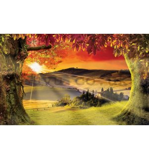 Wall Mural: Tuscany (Sunset) - 254x368 cm
