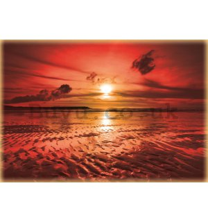 Wall Mural: Sunset at the beach (3) - 254x368 cm
