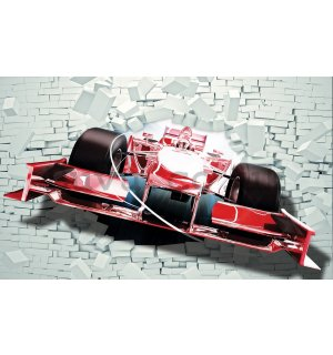 Wall Mural: Formula in the wall - 184x254 cm