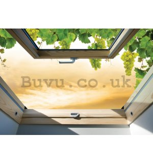 Wall Mural: Window with grapes - 184x254 cm