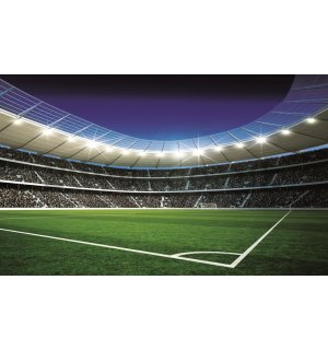 Wall Mural: Football Stadion (2) - 254x368 cm