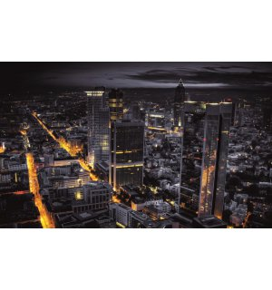 Wall Mural: Night City (2) - 184x254 cm