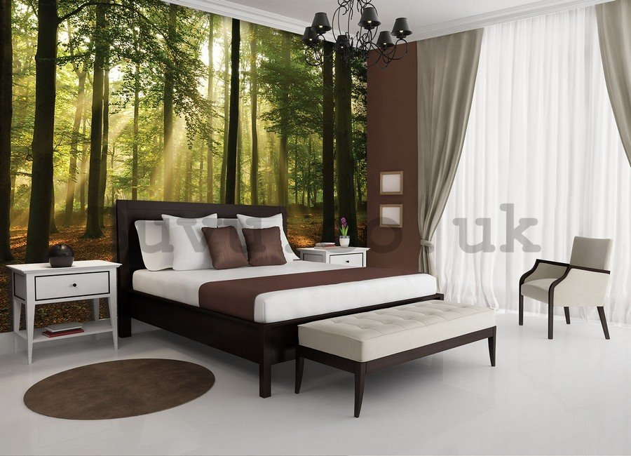 Wall mural vlies: Sun in the Forest (4) - 104x152,5 cm