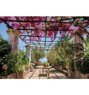 Wall mural vlies: Pergola with flowers - 254x368 cm
