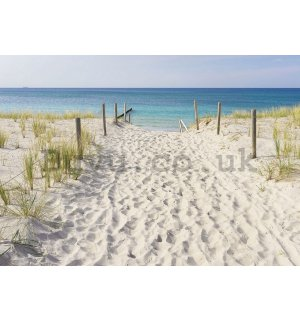 Vlies wall mural : Patway to beach (3) - 184x254 cm
