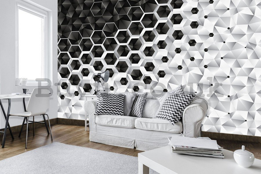 Wall mural vlies: 3D Abstraction (4) - 254x368 cm